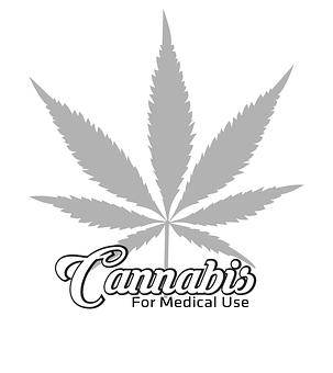 Agriculture, Background, Cannabis, Colorado, Concept