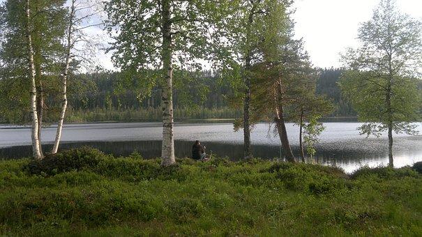 Landscape, Nature, Umea, Sweden