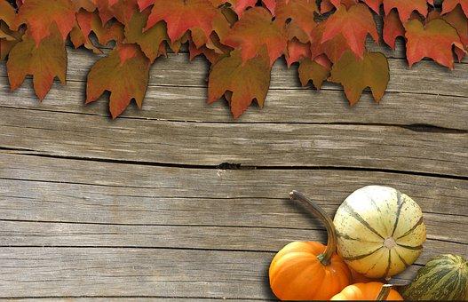 Wine, Background, Autumn, Decoration, Wood