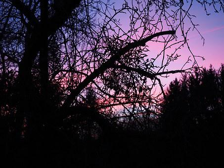 Afterglow, Evening, Abendstimmung, Sunset, Evening Sky