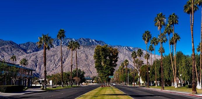 Palm Springs, California, Palm Trees, Desert, Landscape