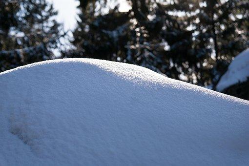 Snow, Winter, Crystals, Frozen, Area, Shine, Light