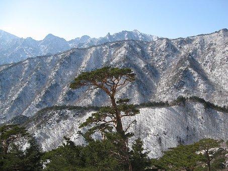 Mt Seoraksan, Snow And Rock, Ulsan Rock