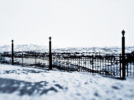Snow, Winter, Christmas, Tree, Ice, Lake, Rope, Home