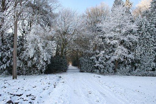 Winter Landscape, Christmas Picture, Winter Scene