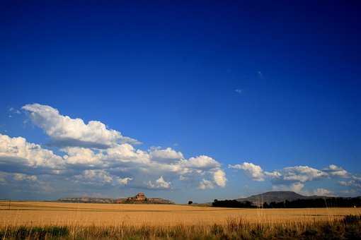 Veld, Grass, Yellow Ochre, Big Blue Sky, White Clouds