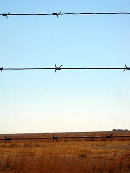 Barbed Wire, Wire, Fence, Barbed, Sharp, Straight