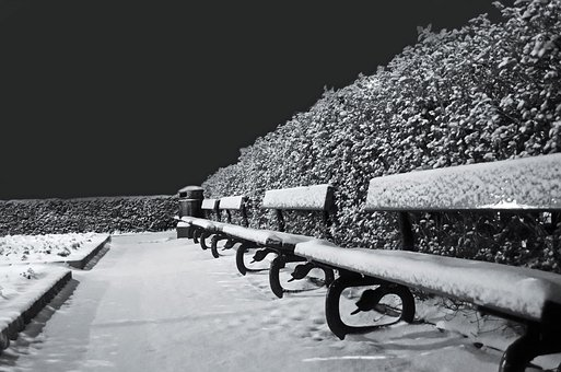 Snowy, Snow, Frost, Seasons, Benches, Bench, Black