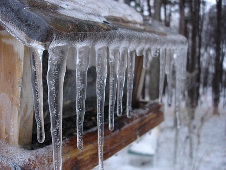 Icicles, Frozen, Cold, Snow, Winter, Icy, Bird Feeder