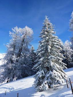 Winter, Snow, Wintry, Cold, Landscape, Snowy