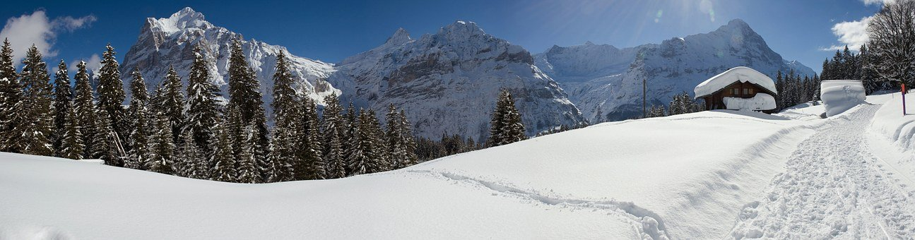 Panorama, Winter, Grindelwald, Switzerland, Wintry