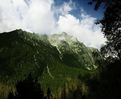 Mountain, Rock, Peaks, Snowclad, Snowy, Nature, Forest
