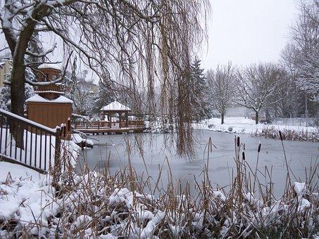 Snow, Winter, Cold, White, Season, Nature, Frost