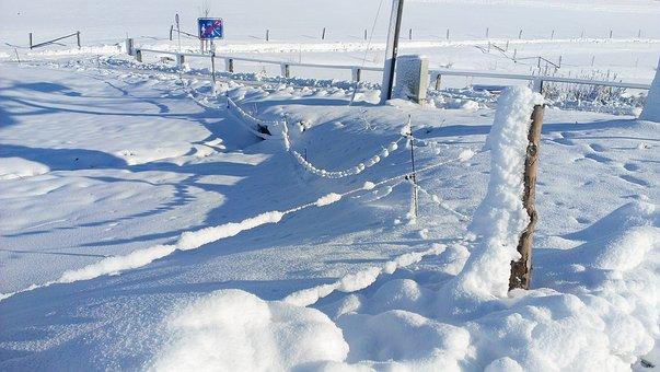 Snow, Winter Blast, Landscape, Snowy, Snow Cover