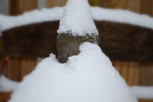 Buddha, Snow, Winter, Holy, Spiritual, Sacred, Buddhist