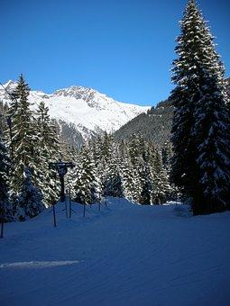 Skiing, Backcountry Skiiing, Winter Sports, Sport, Ski