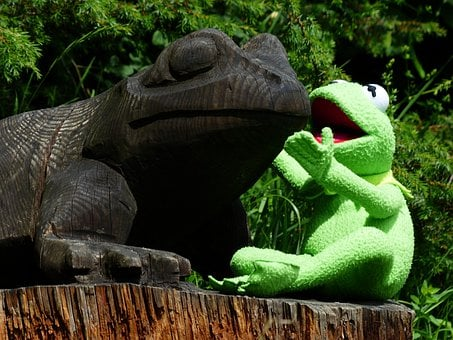Kermit, Frog, Talk, Talk About A, Talk To Each Other