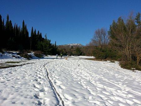 Snow Trail, White, Winter, Trail, Snow, Snowy