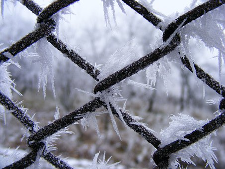 Winter, Crystals, Flakes, Snowy, White, Icy, Ice, Cold