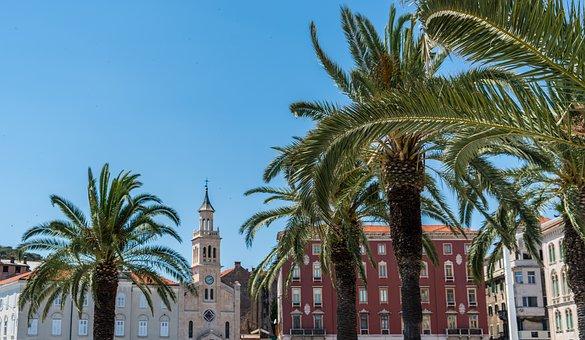 Split, Croatia, Architecture, Sky, Nature, Palm Trees