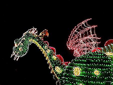 Disney World, Petes Dragon, Light Parade, Vacation