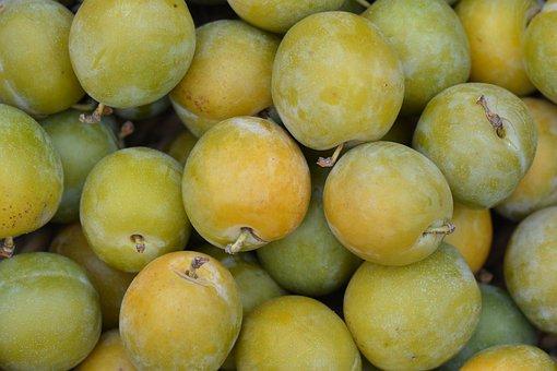 Plums, Reine Claude, Fruit
