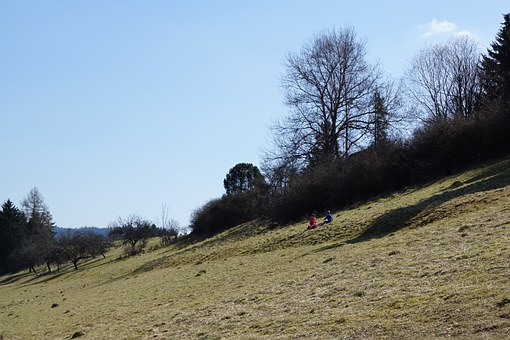 Slope, Meadow, Nature, Landscape, Honing Mountain