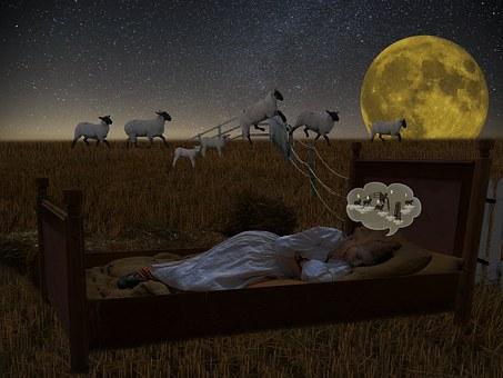 Good Night, Sleep, Fall Asleep, Insomnia, Bed, Pillow