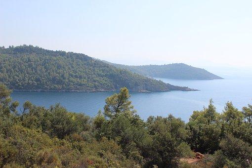 Turkey, Mugla, Akbuk, Nature, Forest, Marine, Peninsula