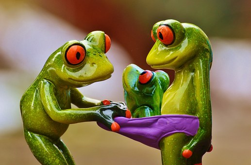 Frogs, Curious, Underpants, Look, Young, Fig, Funny