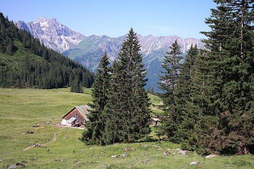 Willers Alp, Alp, Bad Hindelang, Oberallgäu