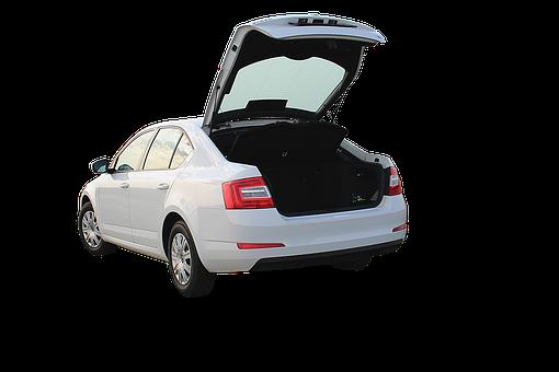 Trunk, Automotive, Vehicle, Luggage, Rear, Auto, Tribe