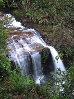 Tasmania, Waterfall, Australia, Water, Nature