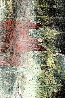 Grunge, Background, Tree, Bark, Red, Yellow, Unusual