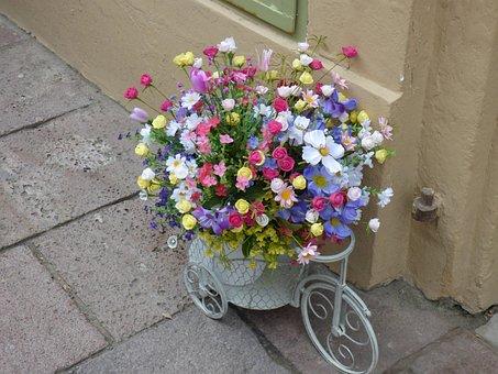 Flowers, Decor, Background, Street, Flower Bed