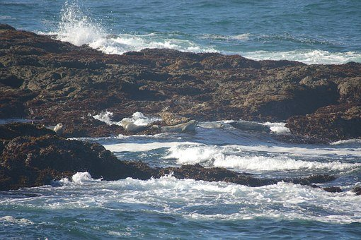 Fort Bragg, Ocean, Rocks, California, Fort, Bragg