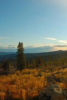 Yukon, St Elias Mountains, Mountain Top, Tundra, Summer