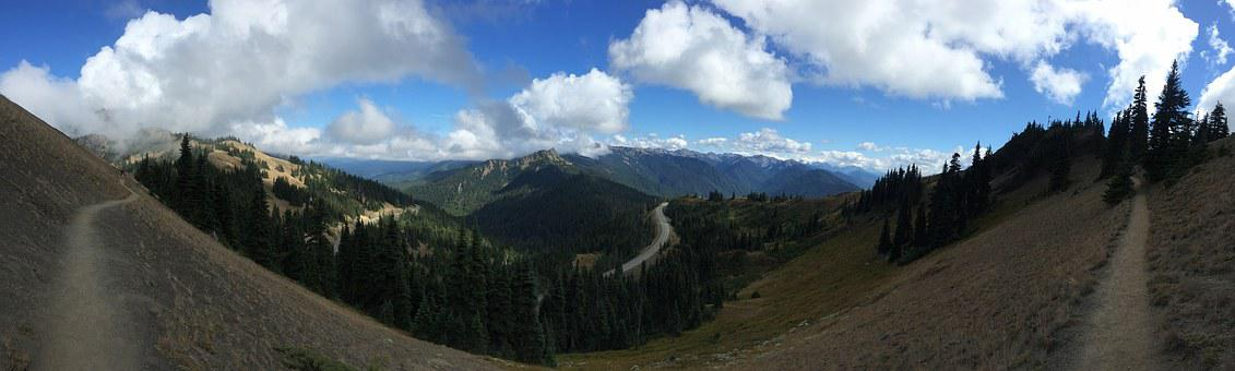 Mountain, Olympic National Park, Wash, Park, Forest