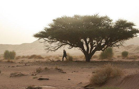 Algeria, Tassili, Desert, Touareg, Deadwood, Sandstorm