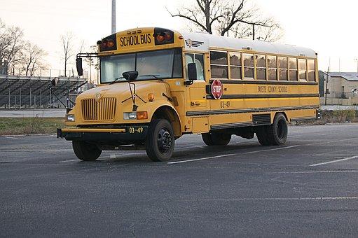 School Bus, Usa, Vehicle, America, Vehicles, Asphalt