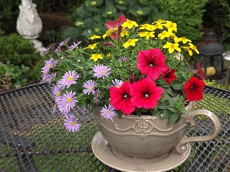 Flowers, Cup, Table, Floral Motif, Decoration