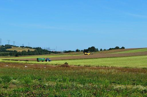 Harvest, Combine, Corn, Landscape, Tractor, Machine