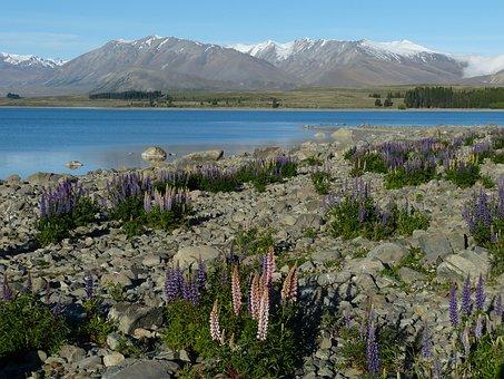 New Zealand, South Island, Mountains, Nature, Landscape