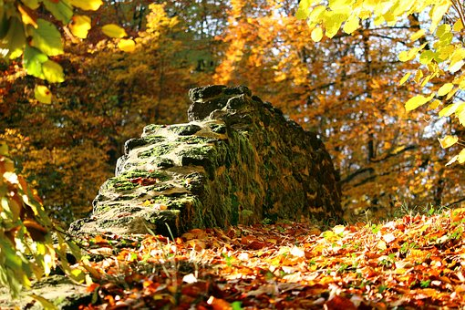 Autumn, Stone Wall, Fall Foliage, Castle Park