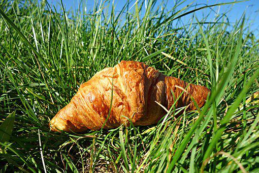Croissant, Roll, Bread, Pastry, Food, Nutrition