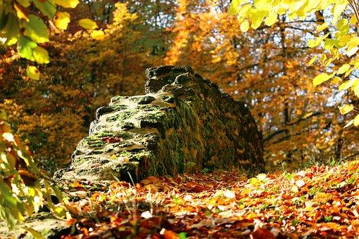 Autumn, Stone Wall, Fall Foliage, Castle Park