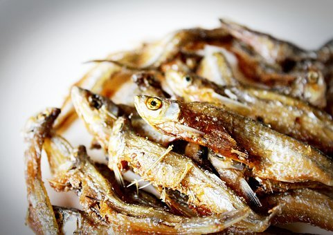 Baked, Course, Fish, Floral, Flores, Food, Fresh, Fried