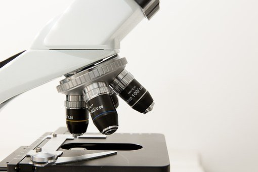 Microscope, Doctor, Practice, Investigation, Medical