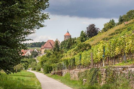 Besigheim, Vineyard, Swabia, Old Town