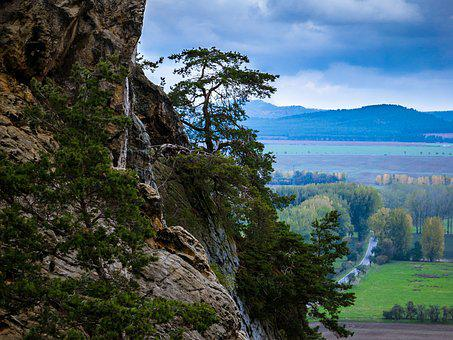 Rock, Tree, Devil's Wall, Mountain, Vision, Outlook